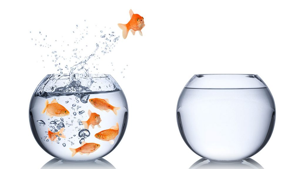 goldfish jumping from crowded bowl to empty one