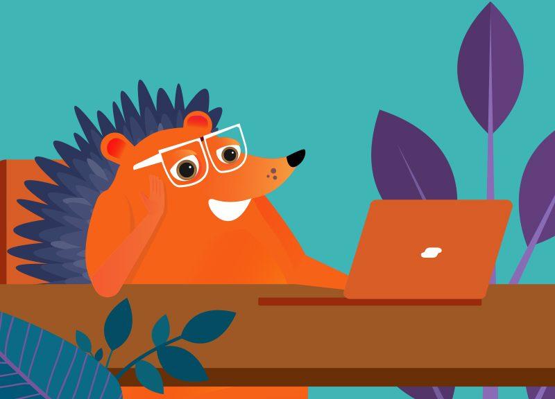 hedgehog working at laptop