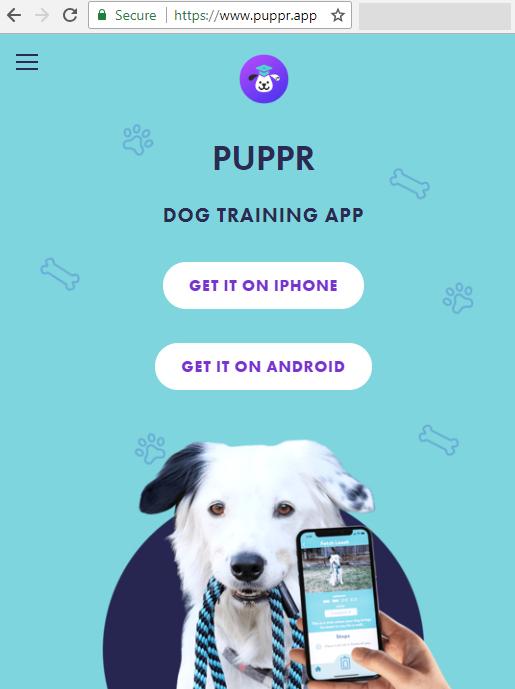 puppr.app image