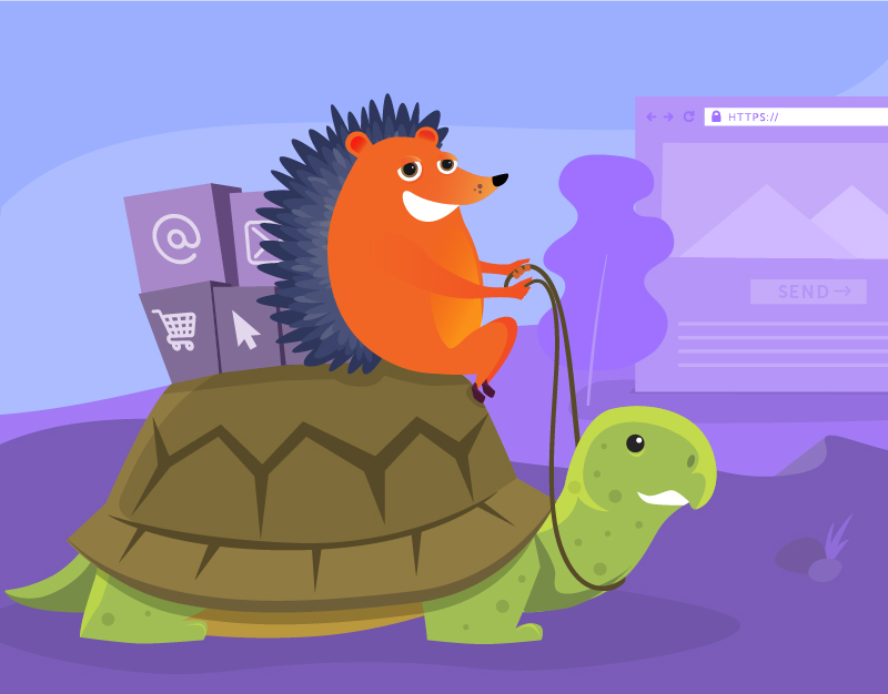 Hedgehog riding turtle to illustrate slow websites