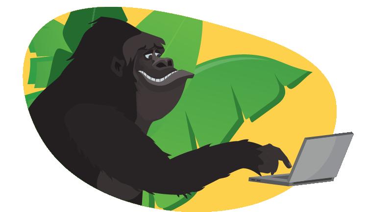 Gorilla working on laptop
