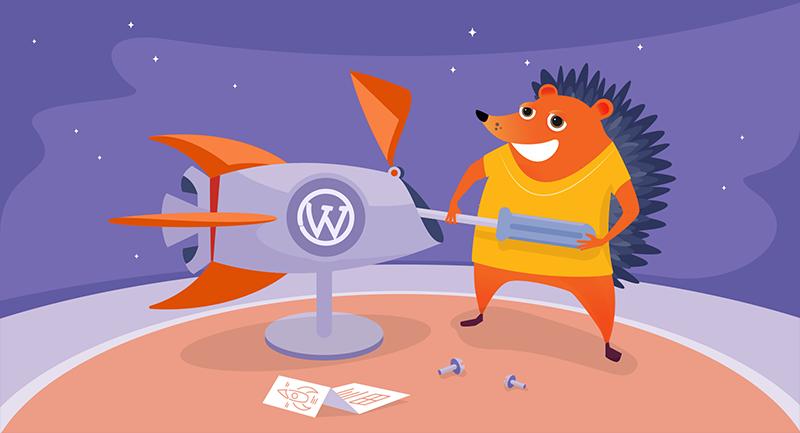 Hedgehog fixing the WordPress rocket