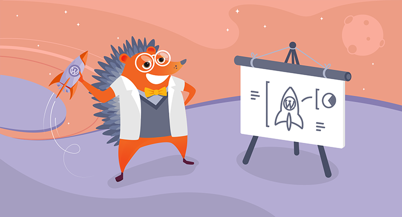 Hedgehog with a rocket diagram