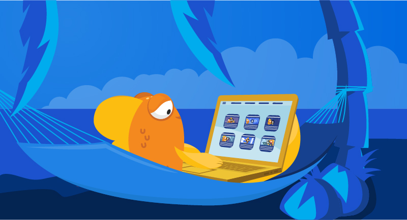 Fish learning on laptop