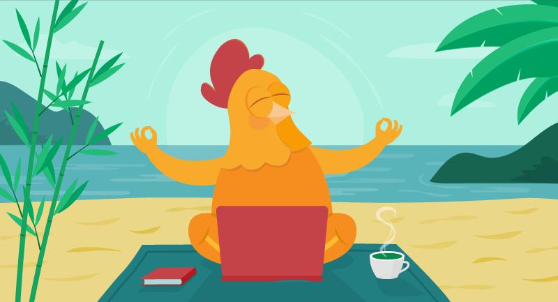 chicken practicing yoga