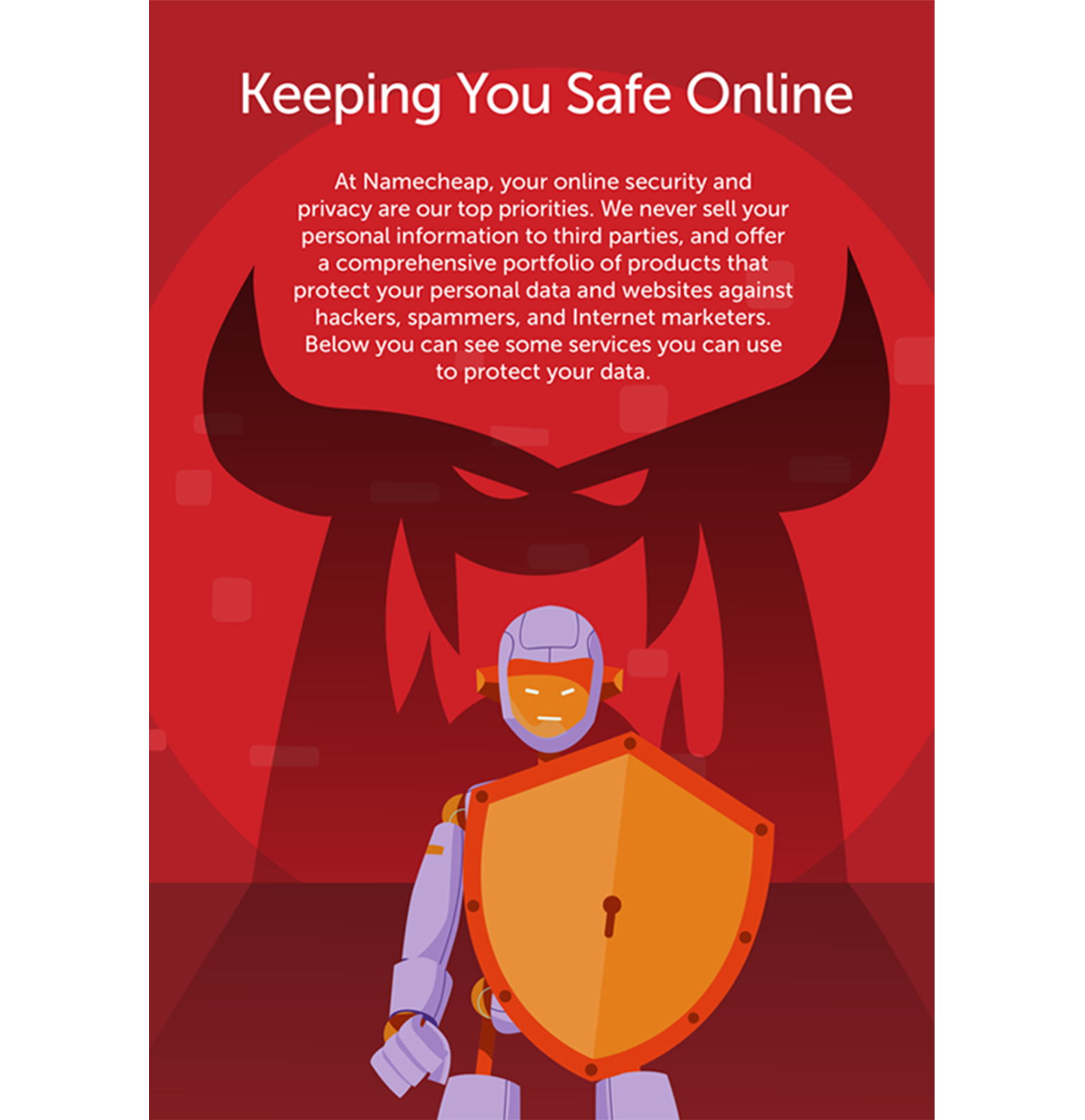Namecheap graphic about online security